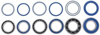 CeramicSpeed Wheel Bearing Upgrade Kit: DT-1 (240 Road)